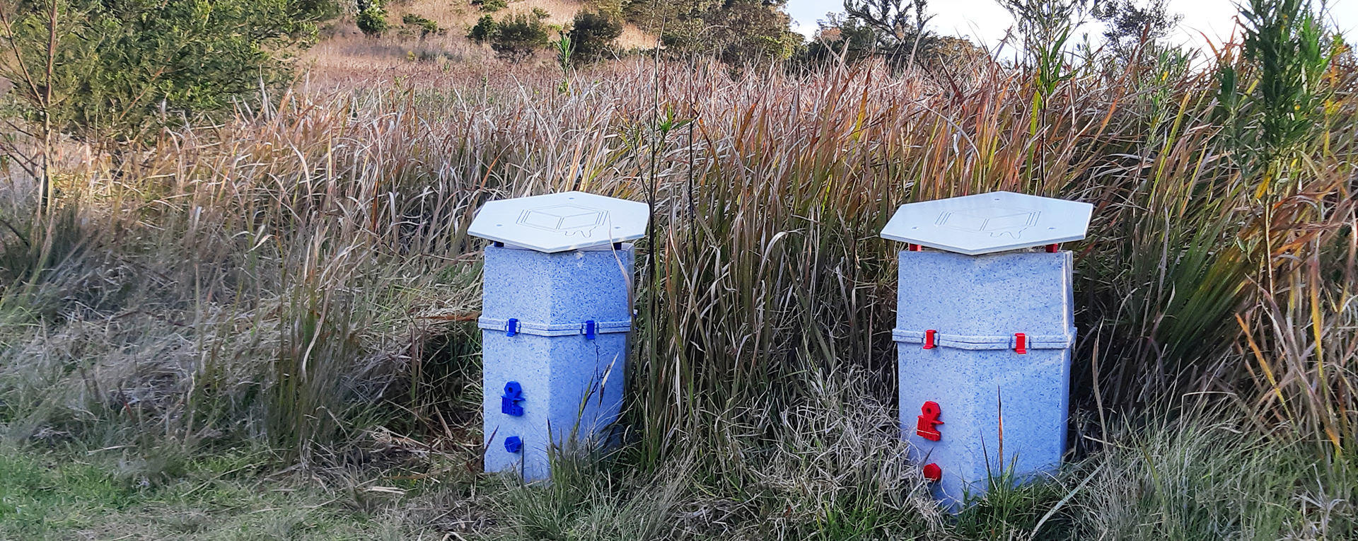 plastic-bee-hives-two-grass